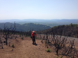 These two places are not the same: chaparral fire at Mt. Diablo State Park